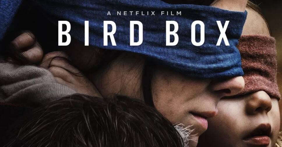 movies like Bird Box